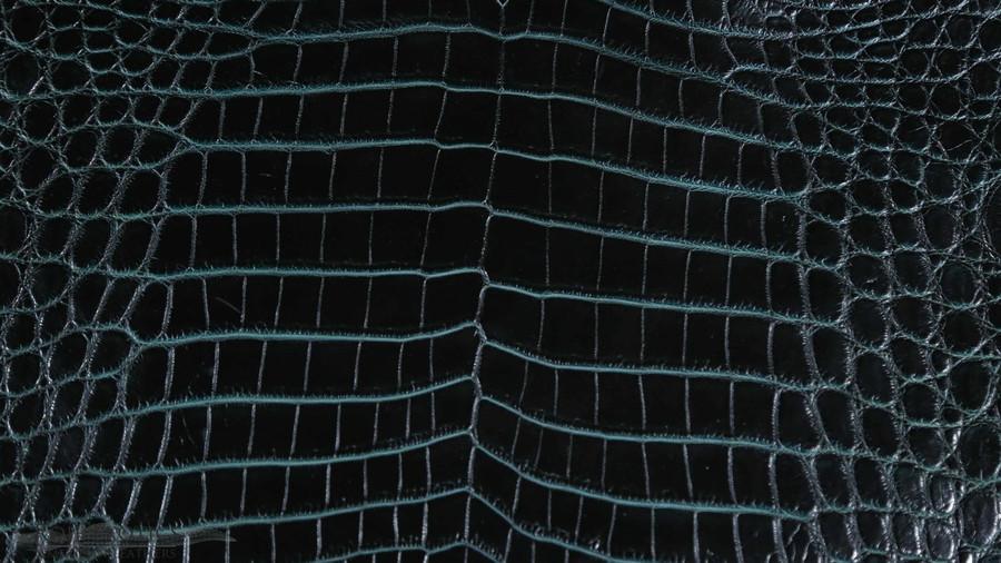 Nile Crocodile Belly - Brown & Turq Two Tone