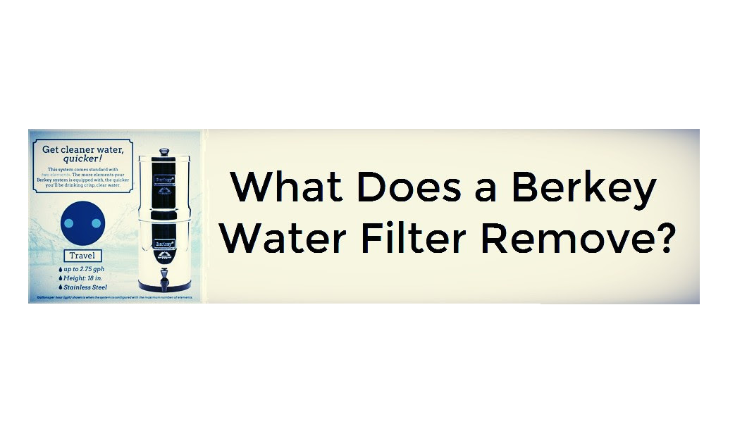 What Does a Berkey Water Filter Remove?