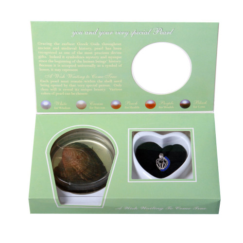 Pearl in Oyster Birthstone Gift Set w/Sterling Silver September CZ Pendant