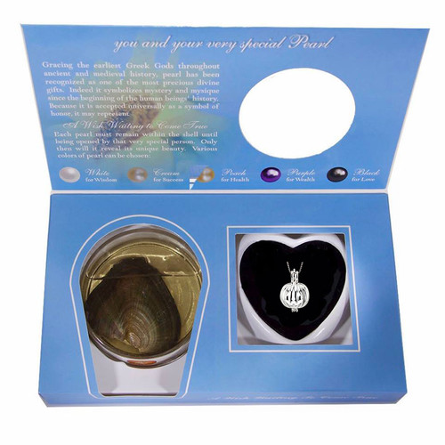 Pearl in Oyster Gift Set w/Sterling SIlver Pumpkin Pendant
