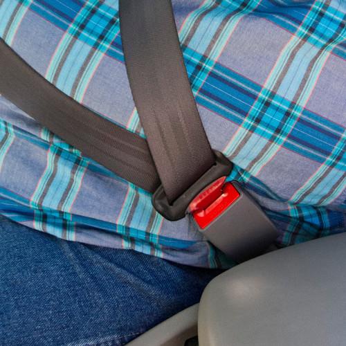 Pontiac Seat Belt Extender