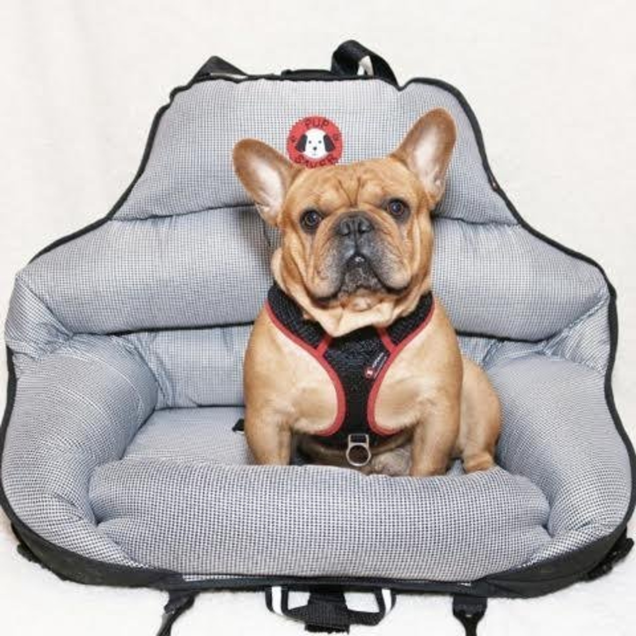 Pupsaver Crash Tested Car Safety Seat For Medium Sized