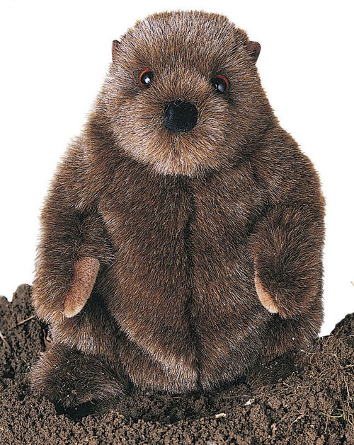Plush Chuckwood Groundhog 11""