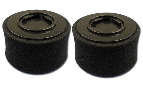 PowerEdge Replacement Vacuum Filter (Pack of 2)