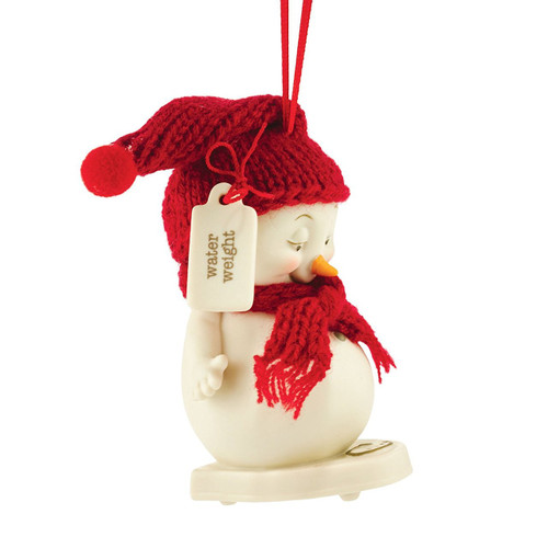 Department 56 Snowpinions Water Weight Ornament 3.74""