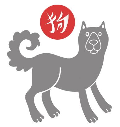 dog-detail18.jpg