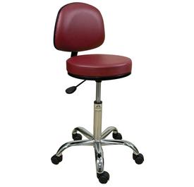 Oakworks Professional Stool with Backrest-Low Height Range