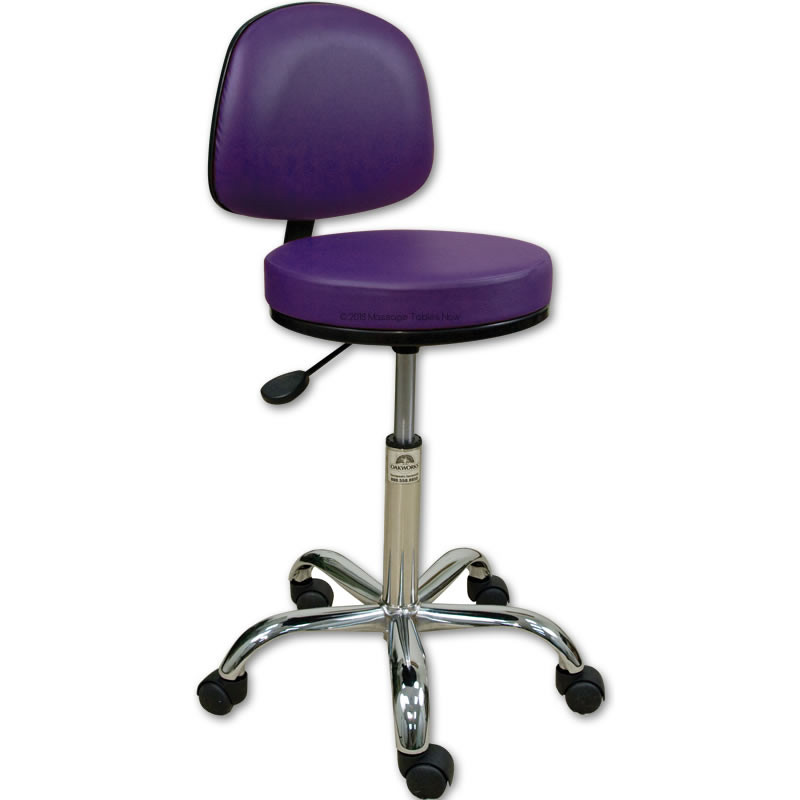 Oakworks Professional Stool With Backrest Low Height Range