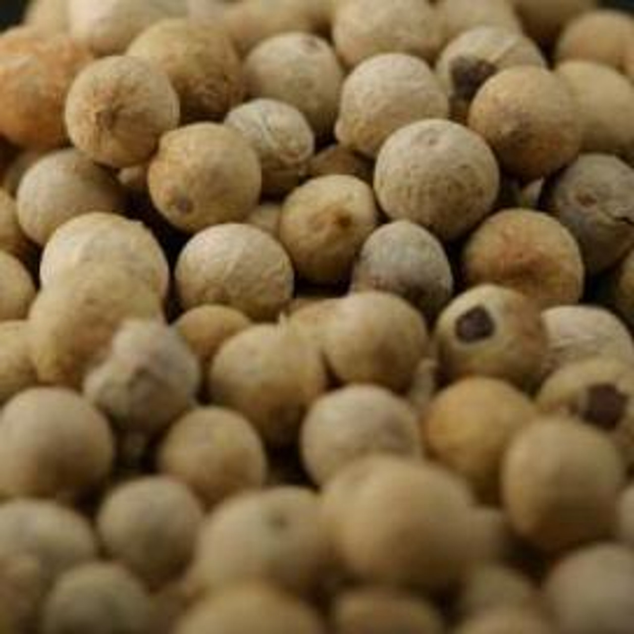 Chick Peas (Ceci) Roasted