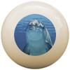 Custom Pool Cue Ball - Dolphin