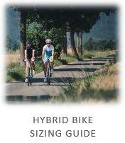 hybridzz.jpg