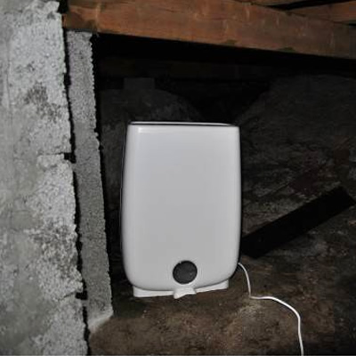 Dehumidifiers to use in cellars