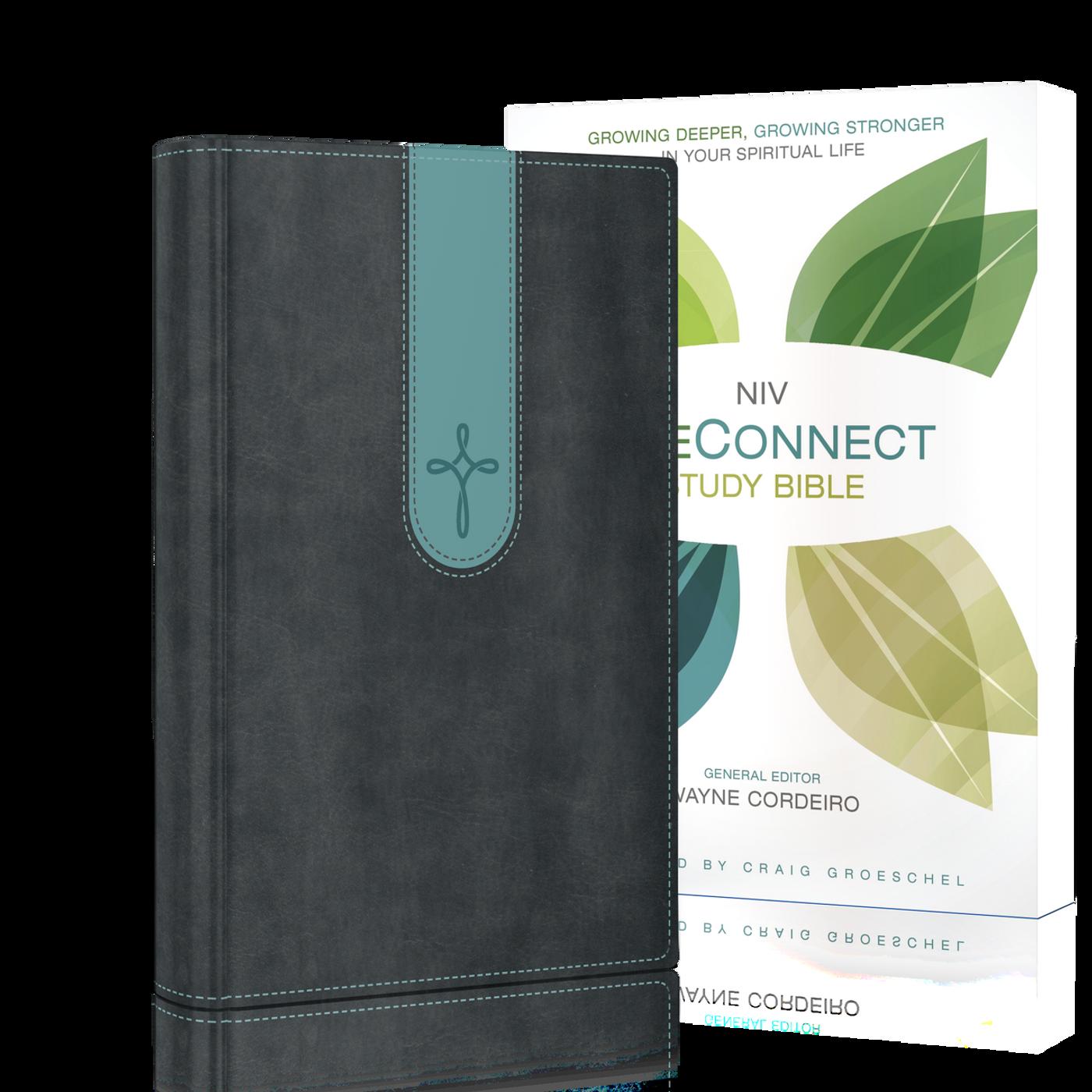 NIV LifeConnect Bible