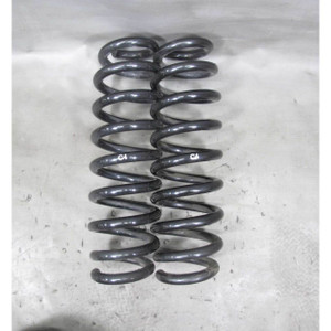 BMW E90 3-Series 1-Series Factory Rear Axle Coil Spring Pair 2006-2011 C4 OEM