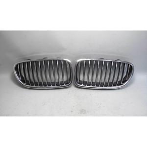 2011-2013 BMW F10 5-Series Sedan Front Factory Kidney Grille Pair Left Right OEM - 20166