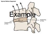 Ergonomics Clipart Image Gallery Reach Envelopes Example