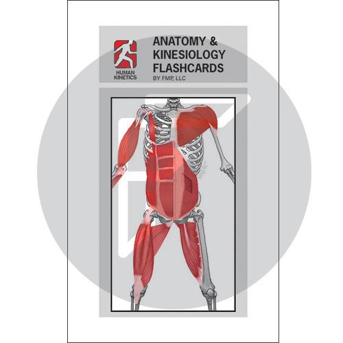 Anatomy & Kinesiology Flash Cards