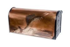Rural Sailfish Copper Mailbox