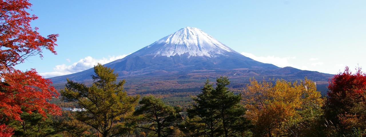 2020- Tokyo, Mt. Fuji,/Hakone & Kyoto 6 Days