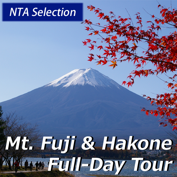 Mt. Fuji & Hakone Full Day Tour