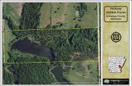 Custom Aerial Maps