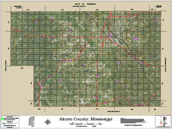 Alcorn County Mississippi 2016 Aerial Map