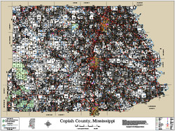 Copiah County Mississippi 2016 Wall Map