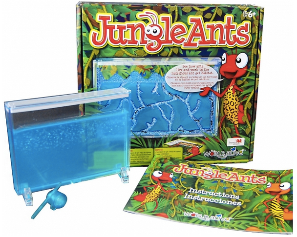 Jungle Ants by World Alive
