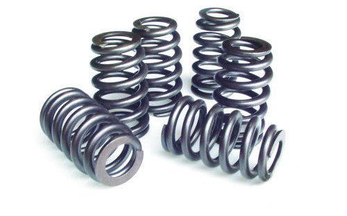 PAC Racing Springs 1200 Series Valve Springs PAC-1214