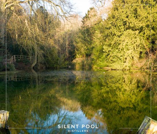 silent-pool-touriiii.jpg