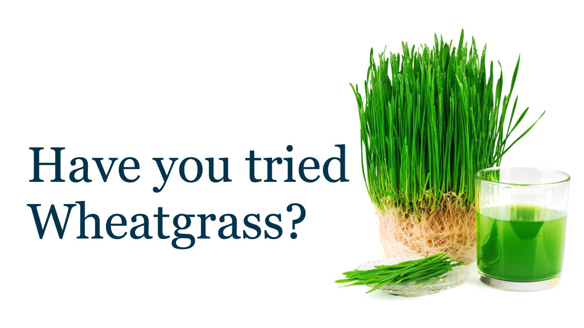 wheatgrass-benefits.jpg