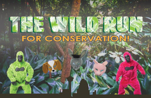 The Wild Run for Conservation!