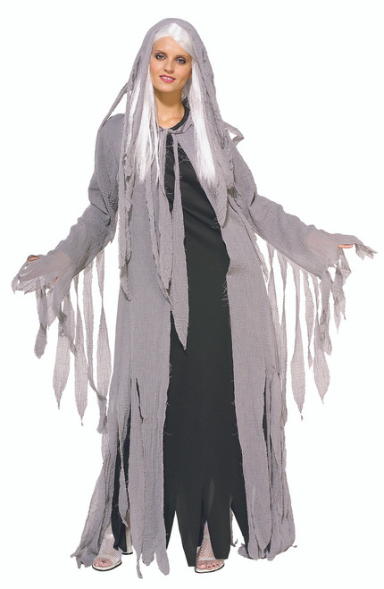 Ladies Midnight Spirit Ghost Costume