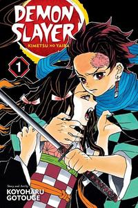 Demon Slayer: Kimetsu No Yaiba Graphic Novel Vol. 01