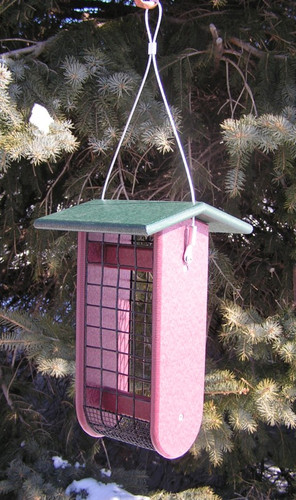 Large Raw Peanut Feeder