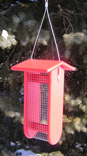 Split Peanut Feeder