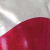 TAPPERS & POINTERS GYM/11 SHINE PANEL LEOTARD Jr