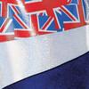 TAPPERS & POINTERS GYM/25 VELVET AND UNION FLAG PRINT LEOTARD Jr