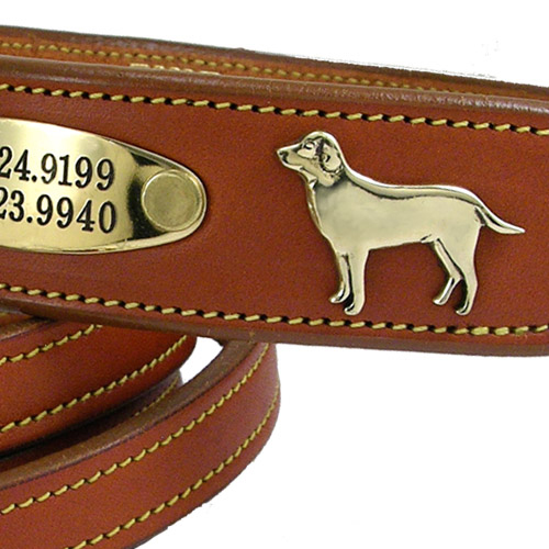 Labrador Bridle Leather Dog Collar Tan