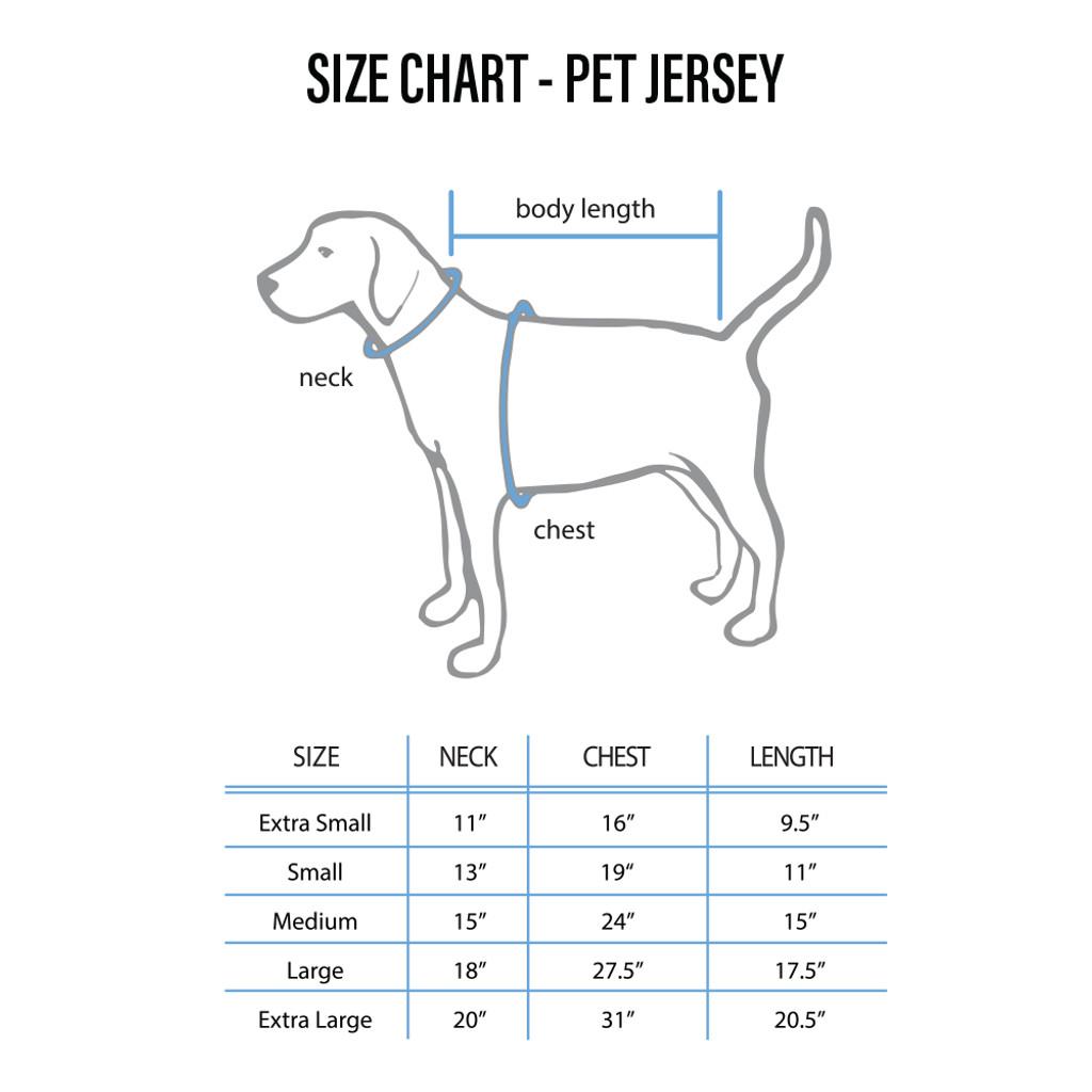 Detroit Lions Pet Jersey Size XL White Caseys Distributing