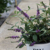 Lo and Behold Blue Chip Jr Butterfly Bush Foliage and Leaves