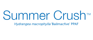 endless-summer-summer-crush-hydrangea-logo.png