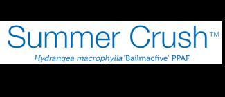 endless-summer-summer-crush-hydrangea-logo.png