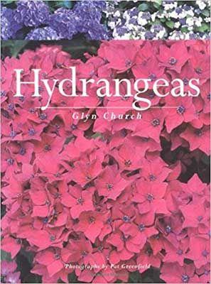 hydrangeas-glyn-church-compressor-1-1.jpg