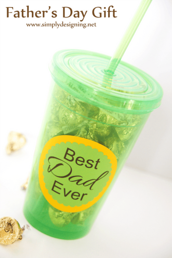 Father'S Day Tumbler Gift