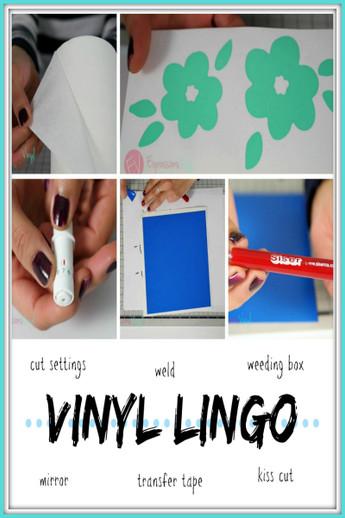 Vinyl Lingo