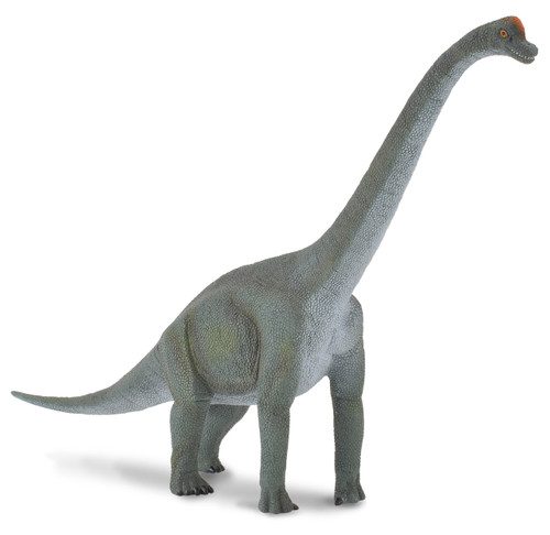 COLLECTA BRACHIOSAURUS (L)