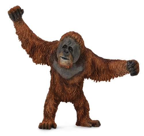 COLLECTA - ORANGUTAN