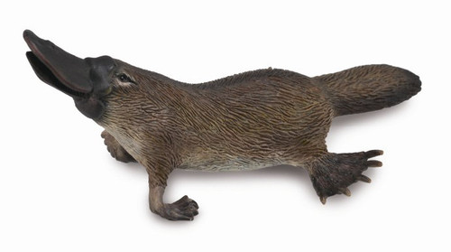 COLLECTA - PLATYPUS