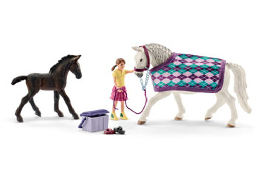 SCHLEICH - LIPIZZANER CARE SET